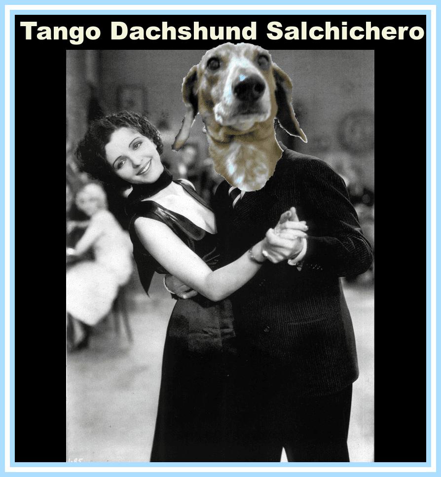 Chacareras Salchicheras Dachshund Argentina
